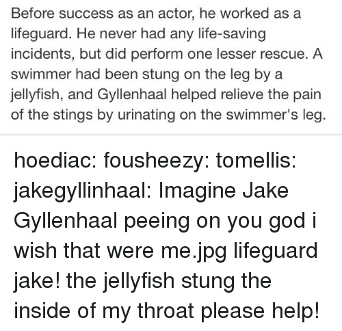 God, Jake Gyllenhaal, and Life: Before success as an actor, he worked as a  lifeguard. He never had any life-saving  incidents, but did perform one lesser rescue. A  swimmer had been stung on the leg by a  jellyfish, and Gyllenhaal helped relieve the pain  of the stings by urinating on the swimmer's leg hoediac: fousheezy:  tomellis:  jakegyllinhaal:  Imagine Jake Gyllenhaal peeing on you  god i wish that were me.jpg  lifeguard jake! the jellyfish stung the inside of my throat please help!