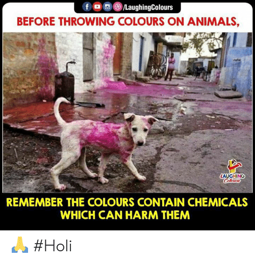 Chemicals: BEFORE THROWING COLOURS ON ANIMALS,  AUGHING  REMEMBER THE COLOURS CONTAIN CHEMICALS  WHICH CAN HARM THEM 🙏 #Holi