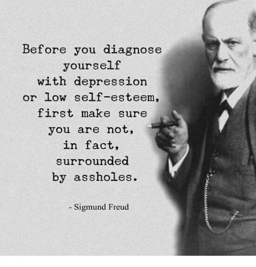 Dank, Sigmund Freud, and Depression: Before you diagnose  yourself  with depression  or low sellf-esteem,  first make sure  you are not,  in fact,  surrounded  by assholes.  - Sigmund Freud