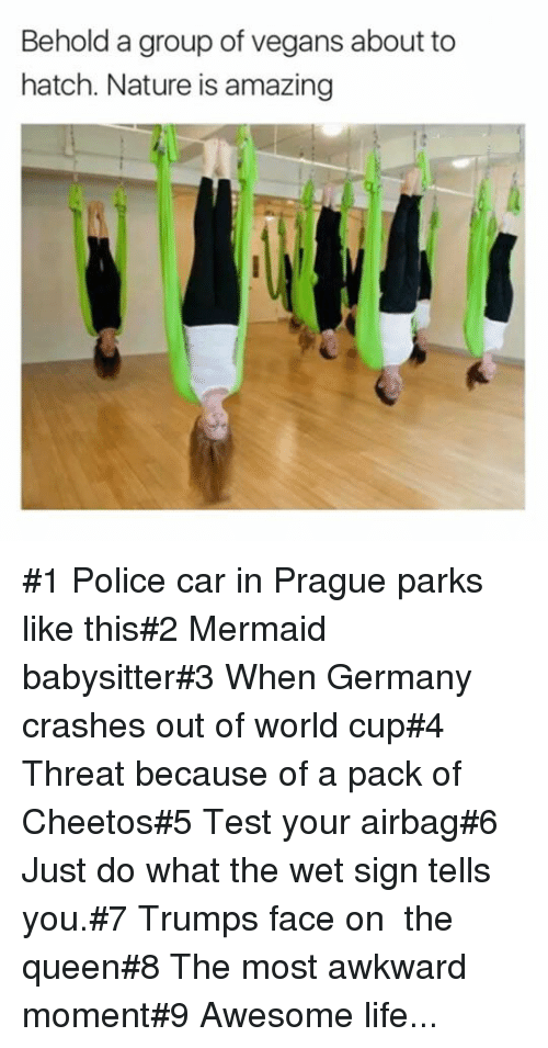 Prague: Behold a group of vegans about to  hatch. Nature is amazing #1 Police car in Prague parks like this#2 Mermaid babysitter#3 When Germany crashes out of world cup#4 Threat because of a pack of Cheetos#5 Test your airbag#6 Just do what the wet sign tells you.#7 Trumps face on  the queen#8 The most awkward moment#9 Awesome life...