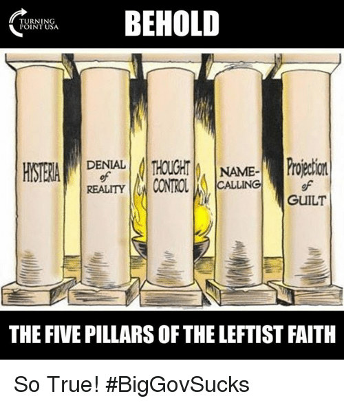 Memes, True, and Faith: BEHOLD  TURNING  POINT USA  DENIAL  NAME  CALLING  REALITY  GUILT  THE FIVE PILLARS OF THE LEFTIST FAITH So True! #BigGovSucks