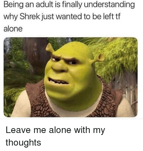Being Alone, Being an Adult, and Shrek: Being an adult is finally understanding  why Shrek just wanted to be left tf  alone Leave me alone with my thoughts