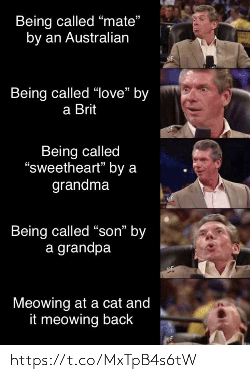 "Grandma: Being called ""mate""  by an Australian  Being called ""love"" by  a Brit  Being called  ""sweetheart"" by a  grandma  Being called ""son"" by  a grandpa  Meowing at a cat and  it meowing back https://t.co/MxTpB4s6tW"