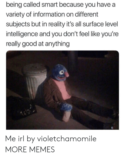 Dank, Memes, and Target: being called smart because you have a  variety of information on different  subjects but in reality it's all surface level  intelligence and you don't feel like you're  really good at anything Me irl by violetchamomile MORE MEMES