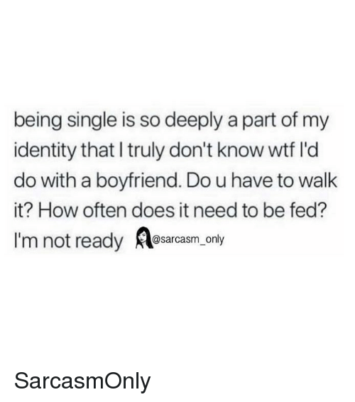 Funny, Memes, and Wtf: being single is so deeply a part of my  identity that I truly don't know wtf l'd  do with a boyfriend. Do u have to walk  it? How often does it need to be fed?  I'm not ready osarcasm. only SarcasmOnly