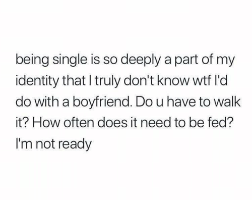 Relationships, Wtf, and Boyfriend: being single is so deeply a part of my  identity that I truly don't know wtf l'd  do with a boyfriend. Do u have to walk  it? How often does it need to be fed?  I'm not ready