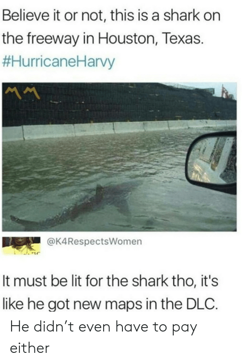 Houston: Believe it or not, this is a shark on  the freeway in Houston, Texas.  #HurricaneHarvy  MM  @K4RespectsWomen  It must be lit for the shark tho, it's  like he got new maps in the DLC. He didn't even have to pay either