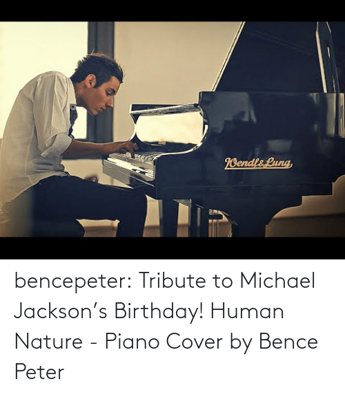 Michael Jacksons: bencepeter:  Tribute to Michael Jackson's Birthday! Human Nature - Piano Cover by Bence Peter