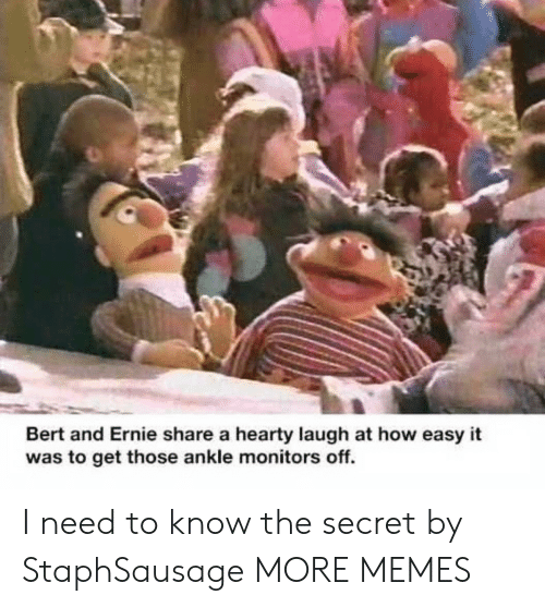 ankle: Bert and Ernie share a hearty laugh at how easy it  was to get those ankle monitors off. I need to know the secret by StaphSausage MORE MEMES