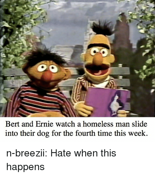 Homeless, Tumblr, and Blog: Bert and Ernie watch a homeless man slide  into their dog for the fourth time this week n-breezii:  Hate when this happens