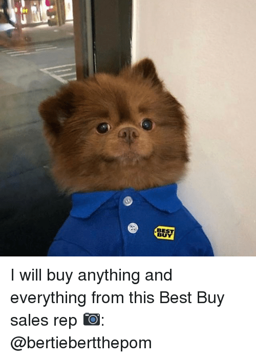 Best Buy: BEST  BU I will buy anything and everything from this Best Buy sales rep 📷: @bertiebertthepom