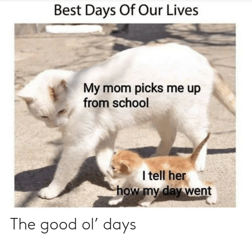 Picks: Best Days Of Our Lives  My mom picks me up  from school  I tell her  how my day went The good ol' days