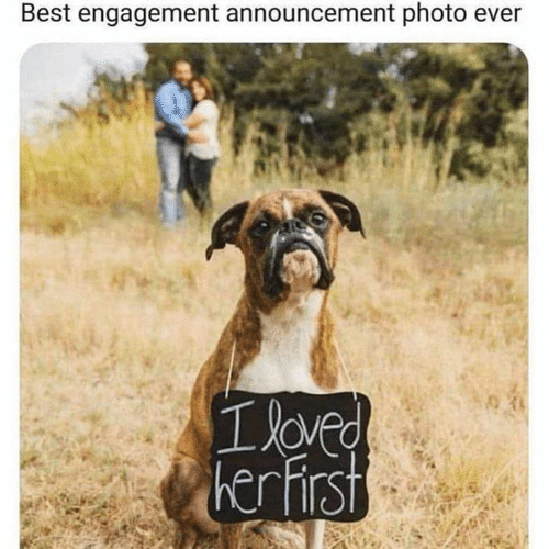 Announcement: Best engagement announcement photo ev  oved  her hirst