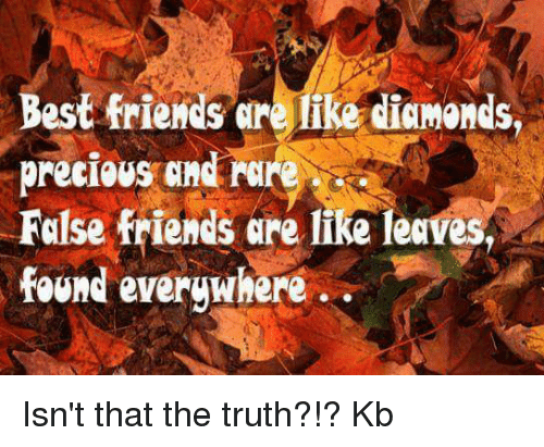 Best Friends Are Like: Best friends are like diamonds,  False friends are like leaves,  found everywhere Isn't that the truth?!? Kb