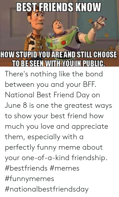 national best friend day: BEST FRIENDS KNOW  HOW STUPID YOU ARE AND STILL CHOOSE  TO BE SEEN WITH YOUIN PUBLIC. There's nothing like the bond between you and your BFF. National Best Friend Day on June 8 is one the greatest ways to show your best friend how much you love and appreciate them, especially with a perfectly funny meme about your one-of-a-kind friendship.  #bestfriends #memes #funnymemes #nationalbestfriendsday