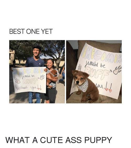 Ass, Cute, and Best: BEST ONE YET  Would be  wuld be WHAT A CUTE ASS PUPPY
