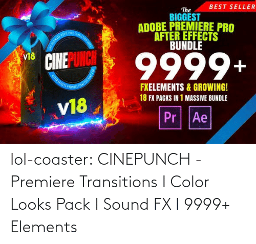 fx: BEST SELLER  The  BIGGEST  ADOBE PREMIERE PRO  AFTER EFFECTS  BUNDLE  OOA COMPLE  9999+  v18  FXELEMENTS & GROWING!  18 FX PACKS IN 1 MASSIVE BUNDLE  v18  Pr Ae lol-coaster:  CINEPUNCH - Premiere Transitions I Color Looks Pack I Sound FX I 9999+ Elements