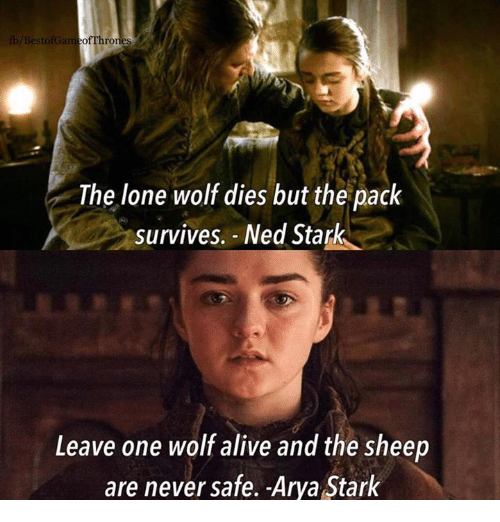 Alive, Memes, and Ned Stark: /Best  The lone wolf dies but the pack  survives. - Ned Stark  Leave one wolf alive and the sheep  are never safe. Arya Stark