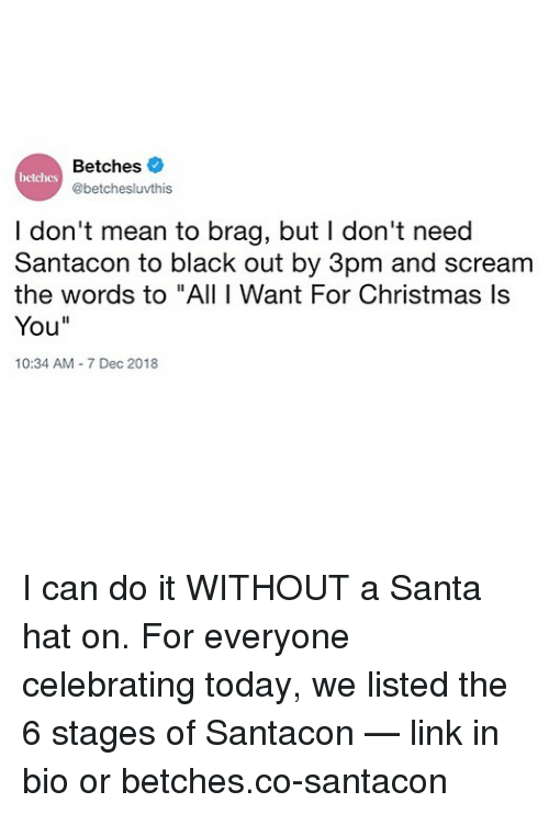"""Christmas, Scream, and Black: Betches  @betchesluvthis  betches  I don't mean to brag, but I don't need  Santacon to black out by 3pm and scream  the words to """"All I Want For Christmas ls  You""""  10:34 AM 7 Dec 2018 I can do it WITHOUT a Santa hat on. For everyone celebrating today, we listed the 6 stages of Santacon — link in bio or betches.co-santacon"""