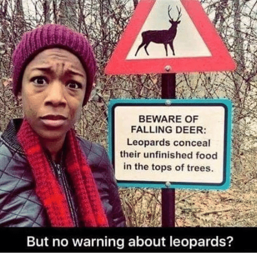 Deer: BEWARE OF  FALLING DEER:  Leopards conceal  their unfinished food  in the tops of trees.  But no warning about leopards?