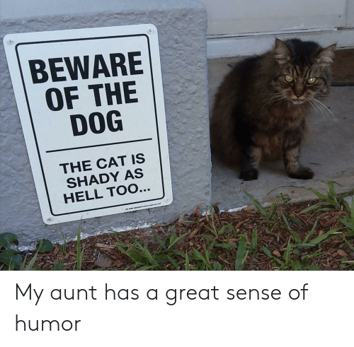 Hell, Dog, and Cat: BEWARE  OF THE  DOG  THE CAT IS  SHADY AS  HELL TOO... My aunt has a great sense of humor