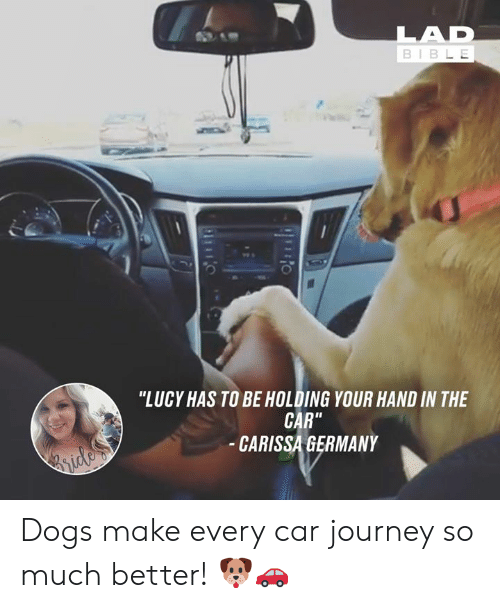 "Dank, Dogs, and Journey: BIBL E  0  ""LUCY HAS TO BE HOLDING YOUR HAND IN THE  CAR""  CARISSA GERMANY Dogs make every car journey so much better! 🐶🚗"