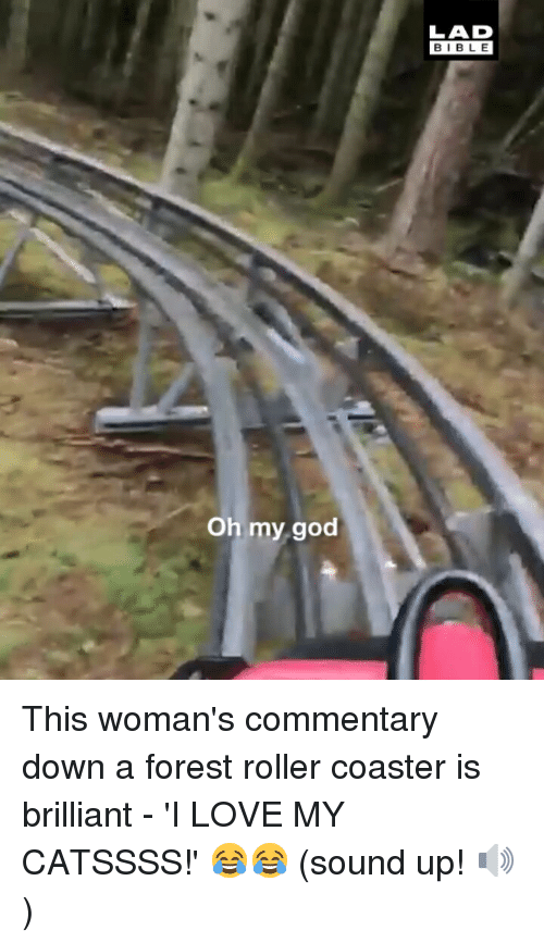 God, Love, and Memes: BIBL E  Oh my god This woman's commentary down a forest roller coaster is brilliant - 'I LOVE MY CATSSSS!' 😂😂 (sound up! 🔊)