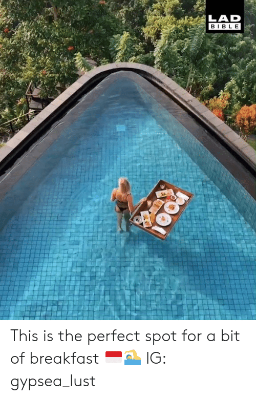 Dank, Bible, and Breakfast: BIBLE This is the perfect spot for a bit of breakfast 🇮🇩🏊  IG: gypsea_lust
