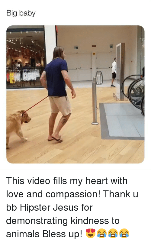 Animals, Bless Up, and Hipster: Big baby This video fills my heart with love and compassion! Thank u bb Hipster Jesus for demonstrating kindness to animals Bless up! 😍😂😂😂