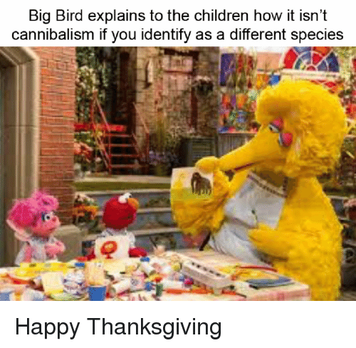 Children, Thanksgiving, and Happy: Big Bird explains to the children how it isn't  cannibalism it you identity as a different species Happy Thanksgiving