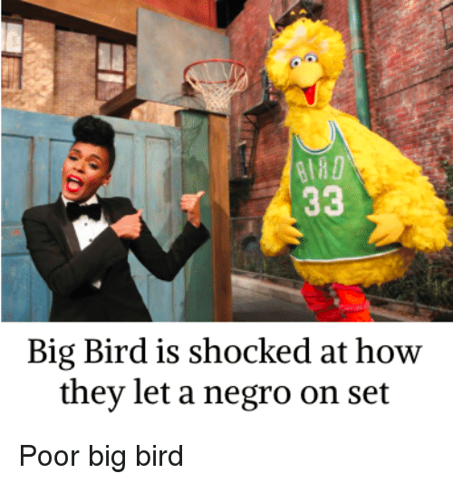 Big Bird Is Shocked At How They Let A Negro On Set Big