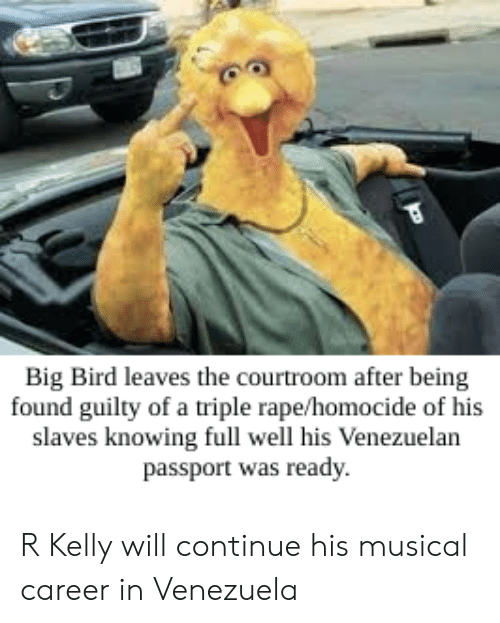 R. Kelly, Passport, and Rape: Big Bird leaves the courtroom after being  found guilty of a triple rape/homocide of his  slaves knowing full well his Venezuelan  passport was ready R Kelly will continue his musical career in Venezuela