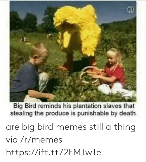 Big Bird: Big Bird reminds his plantation slaves that  stealing the produce is punishable by death are big bird memes still a thing via /r/memes https://ift.tt/2FMTwTe