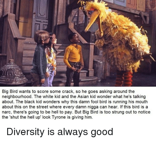 Asian, Black, and Good: Big Bird wants to score some crack, so he goes asking around the  neighbourhood. The white kid and the Asian kid wonder what he's talking  about. The black kid wonders why this damn fool bird is running his mouth  about this on the street where every damn nigga can hear. If this bird is a  narc, there's going to be hell to pay. But Big Bird is too strung out to notice  the 'shut the hell up look Tyrone is giving him. Diversity is always good