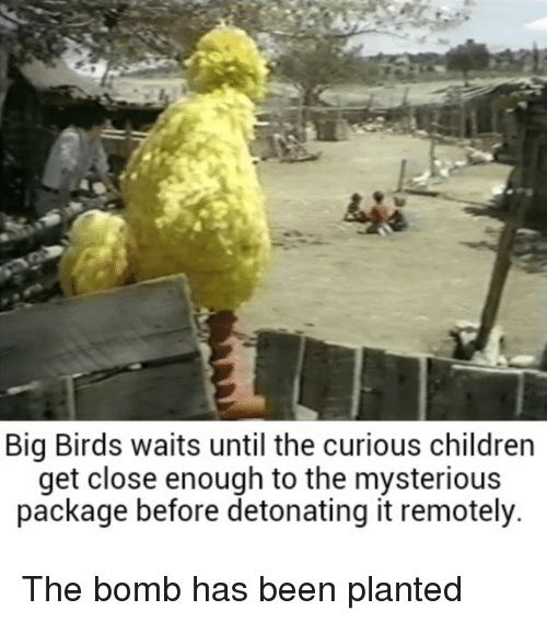 Birds, Been, and Big: Big Birds waits until the curious childrern  get close enough to the mysterious  package before detonating it remotely. The bomb has been planted