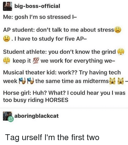 Teching: big-boss-official  Me: gosh I'm so stressed l-  AP student: don't talk to me about stress  . I have to study for five AP-  Student athlete: you don't know the grind (  :) keep it型we work for everything we-  Musical theater kid: work?? Try having tech  week Fu Fu the same time as midterms  Horse girl: Huh? What? I could hear you I was  too busy riding HORSES  aboringblackcat Tag urself I'm the first two