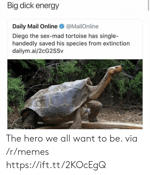 Big Dick, Energy, and Memes: Big dick energy  Daily Mail Online@MailOnline  Diego the sex-mad tortoise has single-  handedly saved his species from extinction  dailym.ai/2cG2SSv The hero we all want to be. via /r/memes https://ift.tt/2KOcEgQ