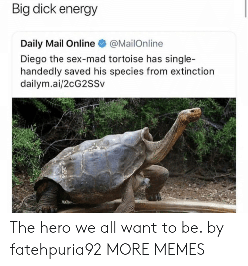 Big Dick, Dank, and Energy: Big dick energy  Daily Mail Online@MailOnline  Diego the sex-mad tortoise has single-  handedly saved his species from extinction  dailym.ai/2cG2SSv The hero we all want to be. by fatehpuria92 MORE MEMES