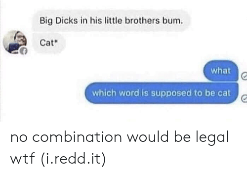 Little Brothers: Big Dicks in his little brothers bum.  Cat  what  which word is supposed to be cat no combination would be legal wtf (i.redd.it)