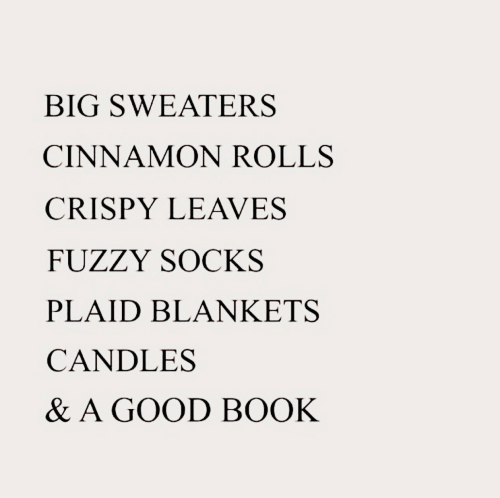 Book, Good, and Candles: BIG SWEATERS  CINNAMON ROLLS  CRISPY LEAVES  FUZZY SOCKS  PLAID BLANKETS  CANDLES  & A GOOD BOOK