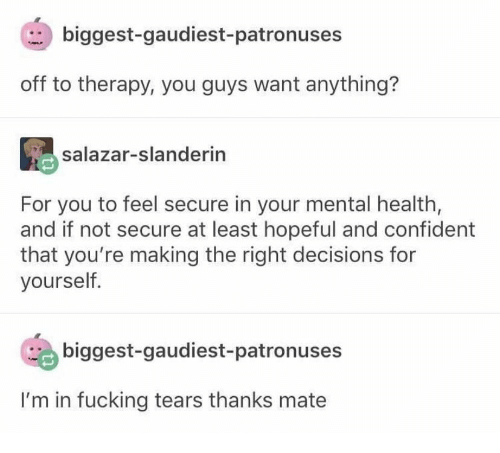 Fucking, Decisions, and Mental Health: biggest-gaudiest- patronuses  off to therapy, you guys want anything?  salazar-slanderin  For you to feel secure in your mental health,  and if not secure at least hopeful and confident  that you're making the right decisions for  yourself.  biggest-gaudiest-patronuses  I'm in fucking tears thanks mate