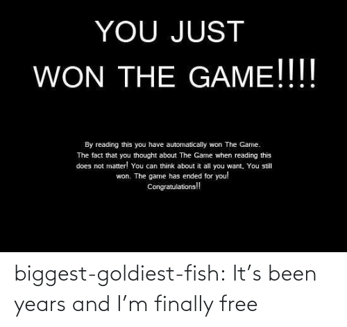 Its Been: biggest-goldiest-fish: It's been years and I'm finally free