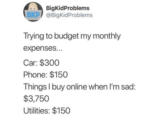 Phone, Budget, and Sad: BigKidProblems  BKP @BigKidProblems  Trying to budget my monthly  expenses...  Car: $300  Phone: $150  Things I buy on line when I'm sad:  $3,750  Utilities: $150