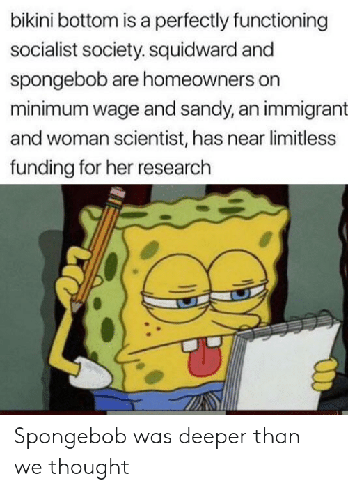 Reddit, SpongeBob, and Squidward: bikini bottom is a perfectly functioning  socialist society. squidward and  spongebob are homeowners on  minimum wage and sandy, an immigrant  and woman scientist, has near limitless  funding for her research Spongebob was deeper than we thought