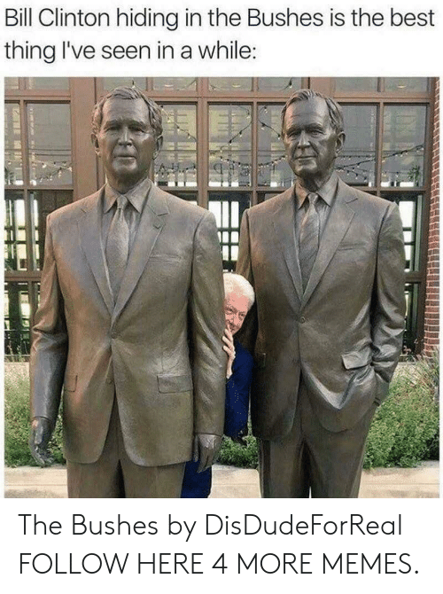 Bill Clinton, Dank, and Memes: Bill Clinton hiding in the Bushes is the best  thing I've seen in a while: The Bushes by DisDudeForReal FOLLOW HERE 4 MORE MEMES.