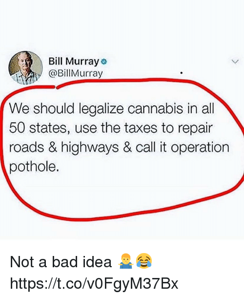 Bad, Taxes, and Bill Murray: Bill Murray  @BillMurray  We should legalize cannabis in all  50 states, use the taxes to repair  roads & highways & call it operation  pothole. Not a bad idea 🤷‍♂️😂 https://t.co/v0FgyM37Bx