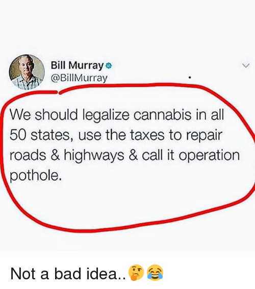 Bad, Taxes, and Bill Murray: Bill Murray  @BillMurray  We should legalize cannabis in all  50 states, use the taxes to repair  roads & highways & call it operation  pothole. Not a bad idea..🤔😂