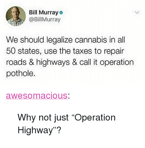 "Tumblr, Taxes, and Bill Murray: Bill Murray o  @Billurray  We should legalize cannabis in all  50 states, use the taxes to repair  roads & highways & call it operation  pothole. <p><a href=""http://awesomacious.tumblr.com/post/173558958201/why-not-just-operation-highway"" class=""tumblr_blog"">awesomacious</a>:</p>  <blockquote><p>Why not just ""Operation Highway""?</p></blockquote>"