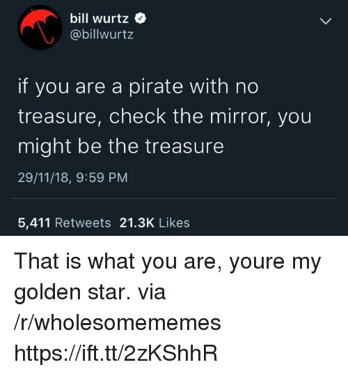 Calvin Johnson: bill wurtz  @billwurtz  if you are a pirate with no  treasure, check the mirror, you  might be the treasure  29/11/18, 9:59 PM  5,411 Retweets 21.3K Likes That is what you are, youre my golden star. via /r/wholesomememes https://ift.tt/2zKShhR