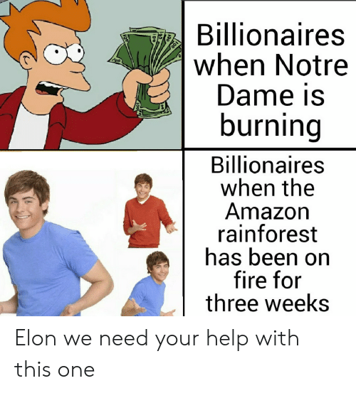 Notre Dame: Billionaires  when Notre  Dame is  burning  Billionaires  when the  Amazon  rainforest  has been on  fire for  three weeks Elon we need your help with this one